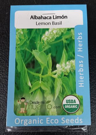 Albahaca Limón / Lemon Basil