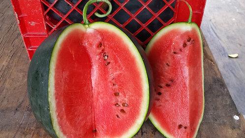 "Watermelon ""Sugar Baby"""
