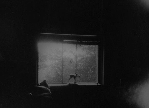 SANS TITRE • Sylvie Meunier
