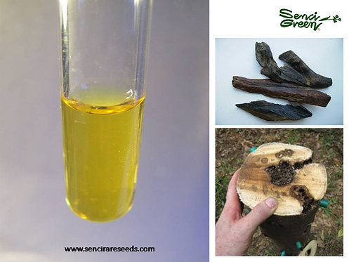 Agarwood Inoculation Chemicals