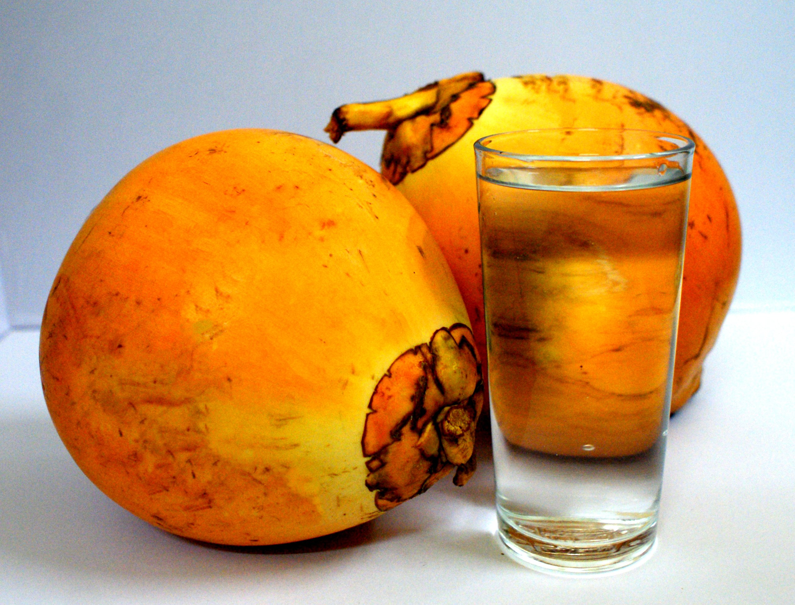 King coconut seed