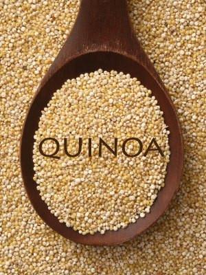 Dogs-and-Quinoa.jpg