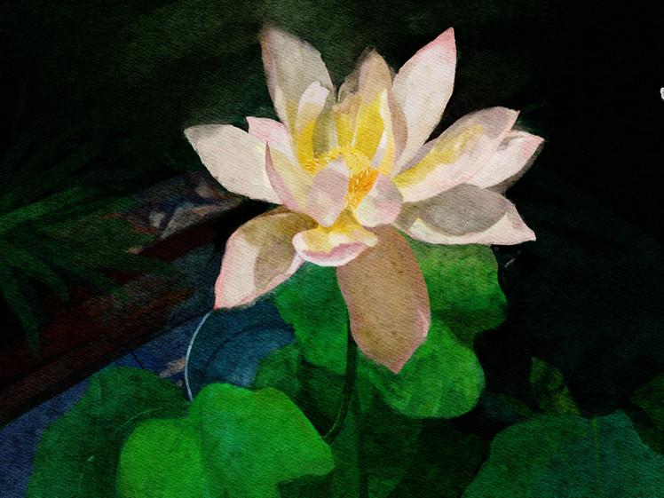 KJ_-_Watercolor_Studio 2.jpg