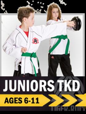 Juniors, martial arts, taekwondo, karate, kids, colorado springs