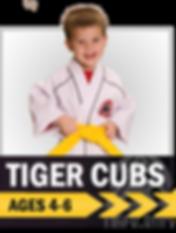 Tiger Cubs, martial arts, taekwondo, karate, colorado springs