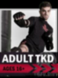 Adult, adults, martial arts, taekwondo, karate, Colorado Springs