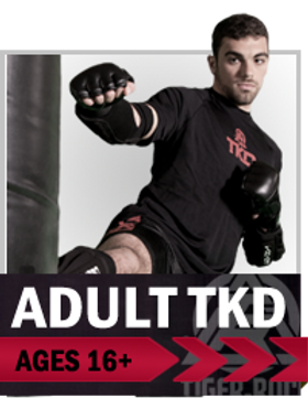 Adult, adults, martial arts, taekwondo, karate, Colorado Springs
