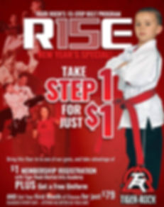 Jan-2017-Campaign-Rise-flyer-r1_edited.j