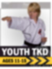 Youth, teens, teenager, martial arts, taekwondo, karate, colorado springs
