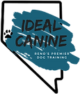 Ideal Canine