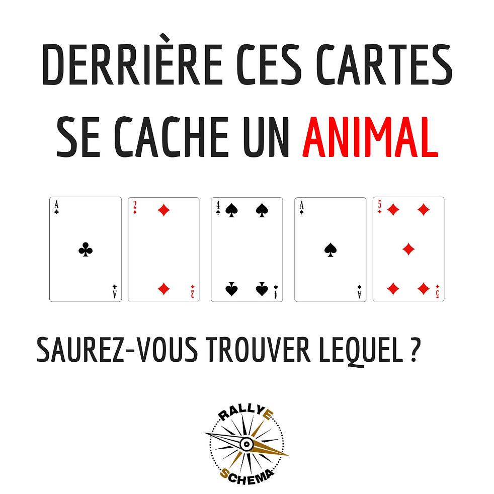 #26. animal.png