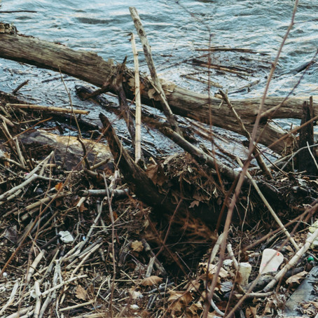 4.6.19 Delaware River Clean-Up