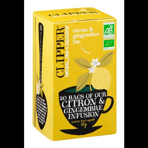 Infusion Citron Gingembre Bio 20 sachets Clipper