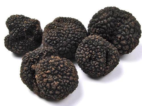 Truffe melanosporum noire du Périgord 100G