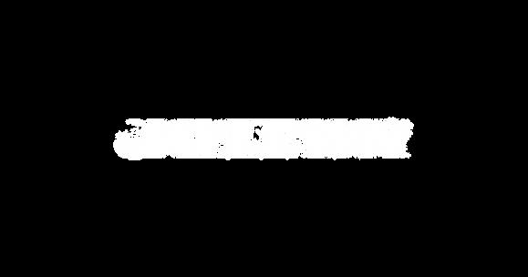 Jay Lewn Logo3-09.png