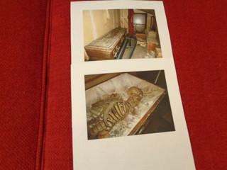 Skeleton in casket