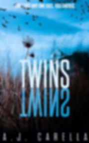 twins current blue cover.jpg