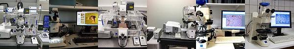lab_lab_desk_confocalImaging.jpg