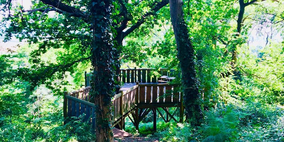 Summer Solstice Yoga - Woodland Day Retreat