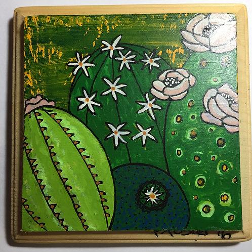 Desert Blooms #1
