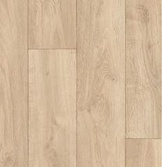 Carpatian oak 2.jpg