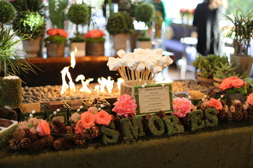 S'mores Bar La Tea Da By Ruth Los Angeles Dessert Tables