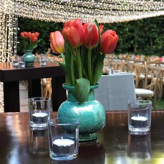 Tulips & Lights