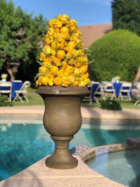 Bright Yellow Lemon Topiary