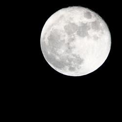 Full Moon taken by our telescope