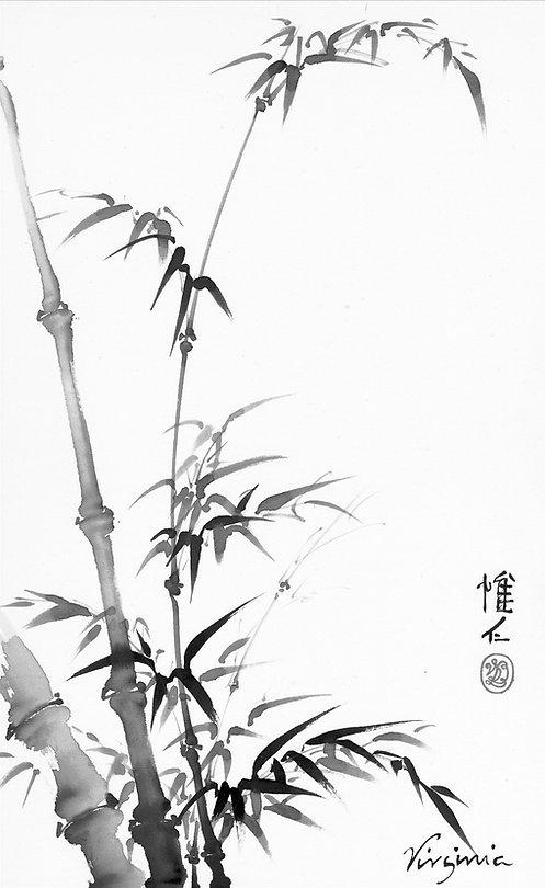 Sunny Bamboo.tif.jpeg