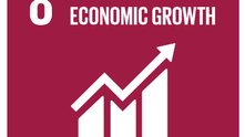 It's the (Unsustainable) Economy, Stupid: Promoting Employment & Economic Growth for All