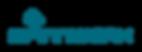 SPiNNWERK-logoRGB-standard-positiv.png
