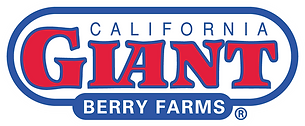 Cal Giant Berries.png