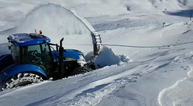 Accola Davos