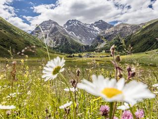 Worte zum 1. August 2020 – 729 Jahre Schweiz