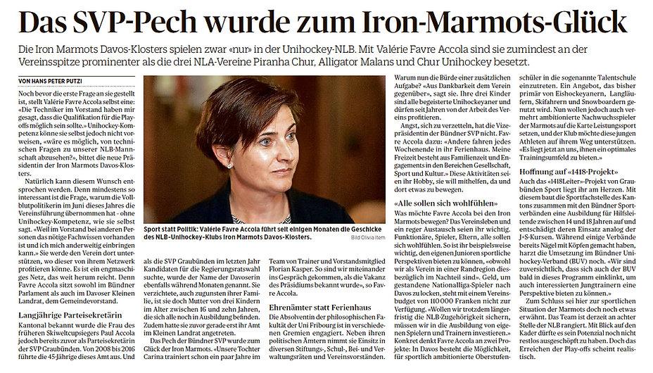 Artikel Iron Marmots.jpg