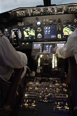 737 Pro Flight Simulation 21