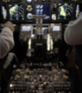 737 Pro Flight Simulation 3.jpg