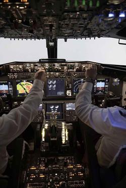 737 Pro Flight Simulation 26