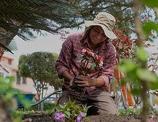 Planting%2520Flowers_edited_edited.jpg