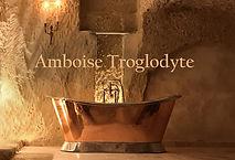 LOGO AMBOISE TROGLODYTE.jpg