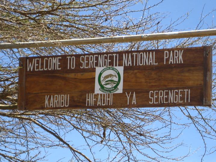 #32 - CURIOSITA'...Il Parco Nazionale SERENGETI e GRUMETI.