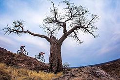 mountain bike safari.jpg