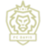 transparent_gold_logo.png