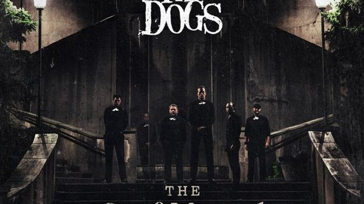 "The Dogs ""The Grief Manual"""