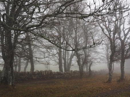 Three big ideas for ghost hunting fun