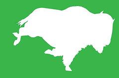Button_bison_WWF_HS_Alumni_green._white.