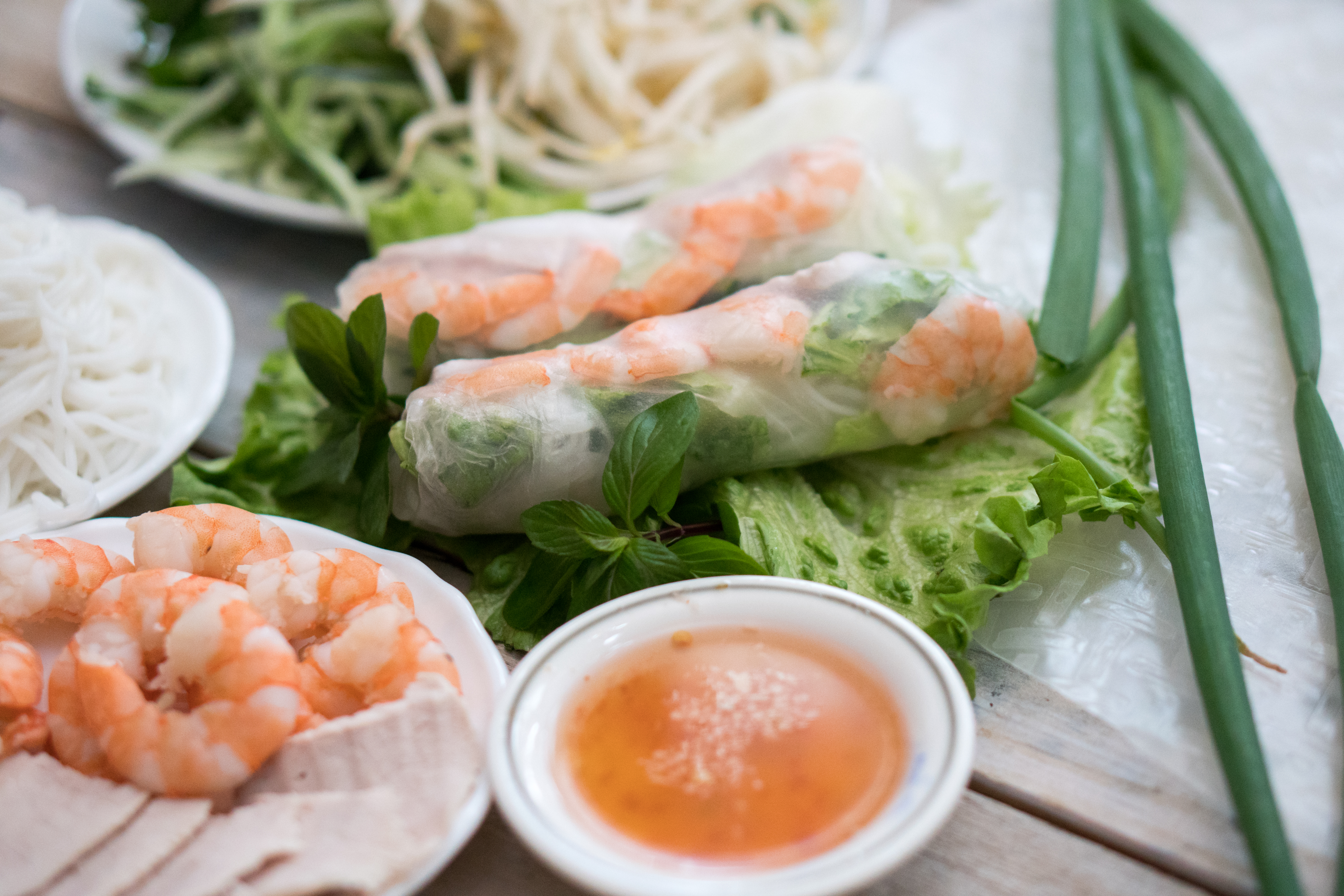 BEP_Food_Photos_SPRINGroll-2