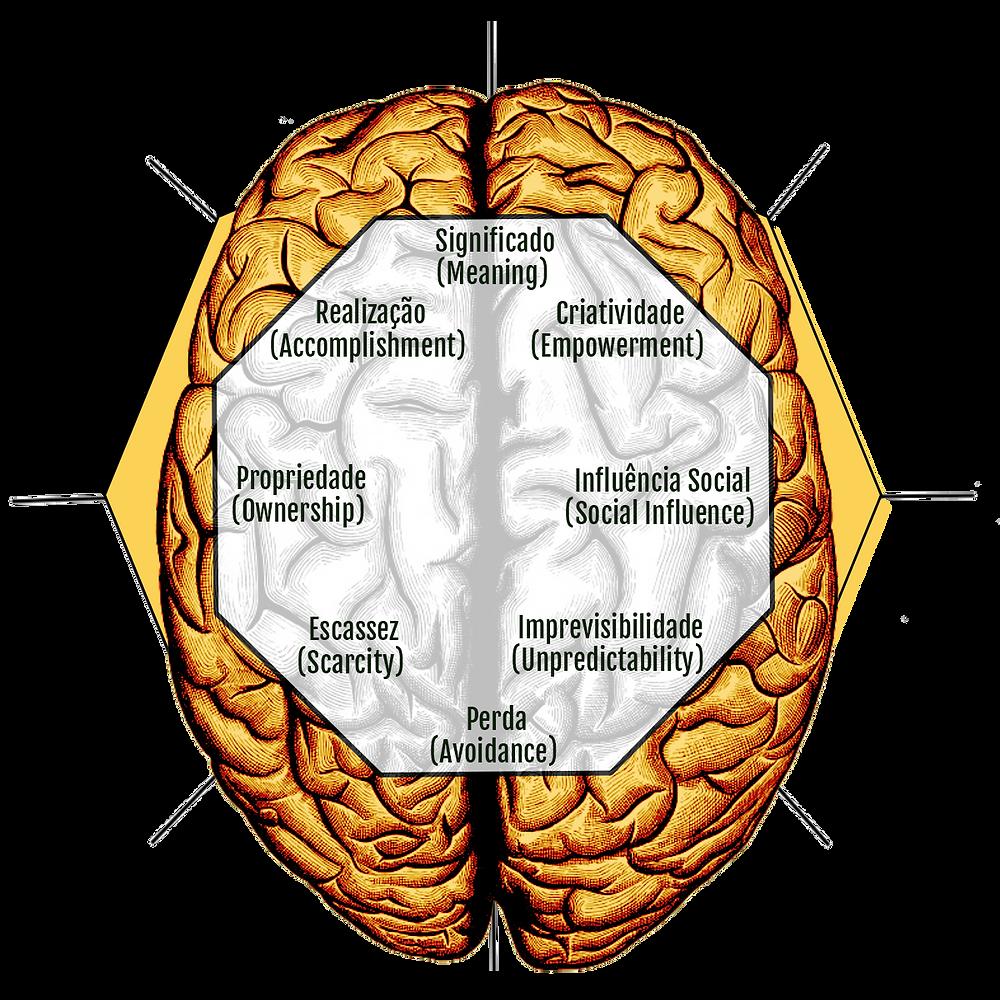 Left e Right Brain Drives