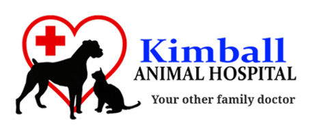 Kimball Animal Hospital - a Kenwood Elementary HUG-PTO Supporter
